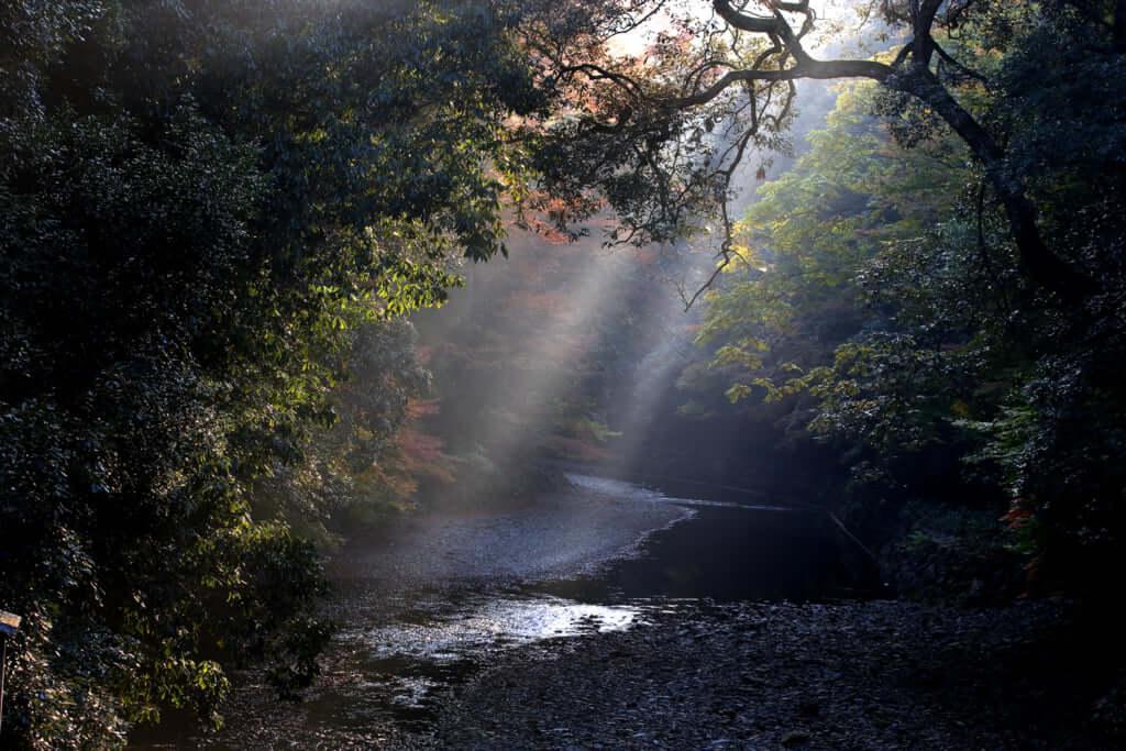 The Awe Inspiring Nature Protects Ise Jingu